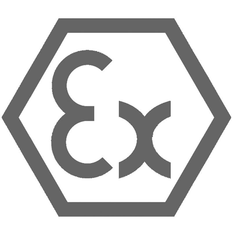 ATEX Ex-t